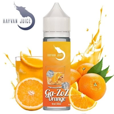 GA-ZOZ ORANGE Aroma 13ml - Hayvan Juice
